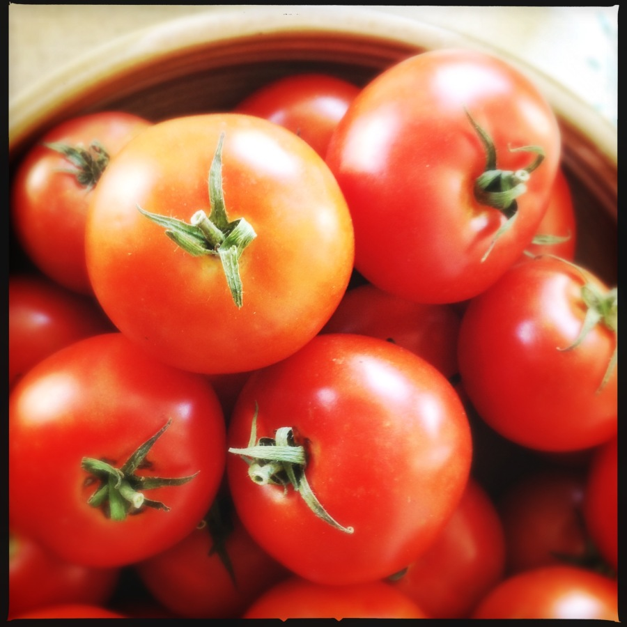 Tomatoes | Heat in The Kitchen