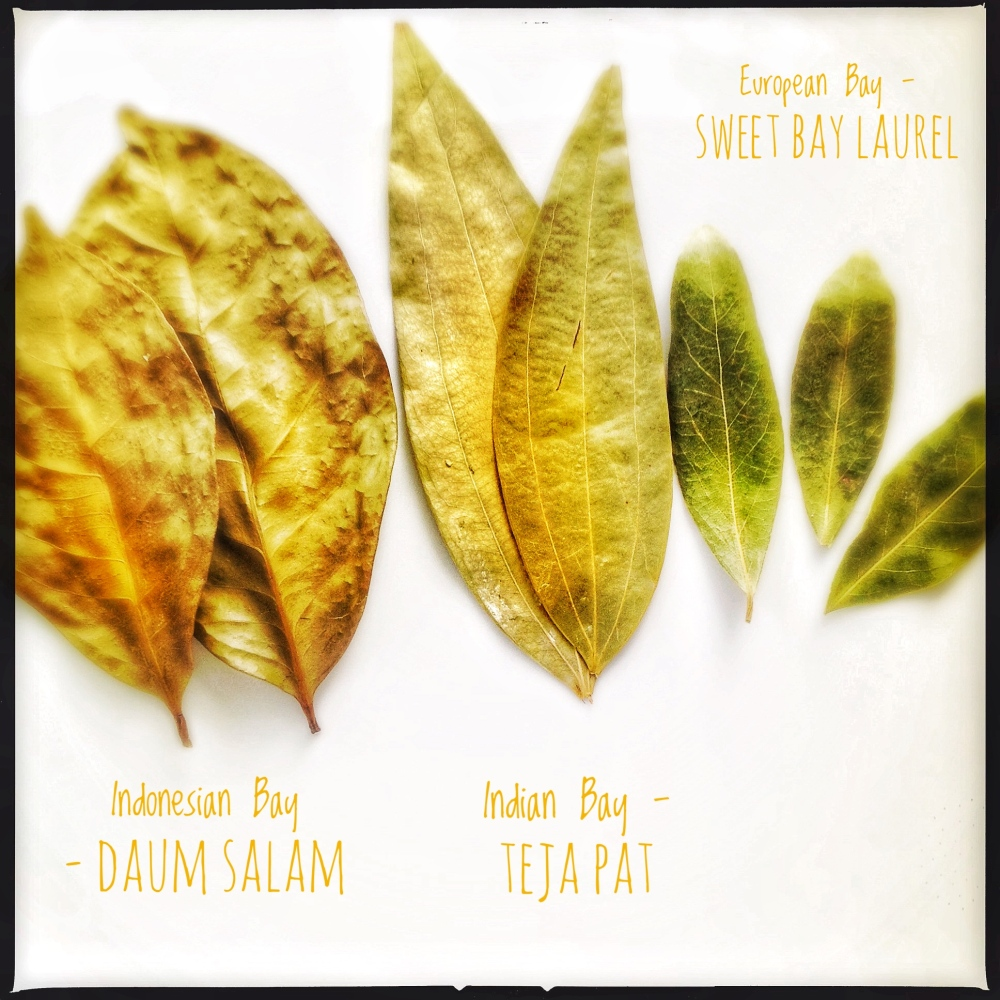 Different Bay Leaves