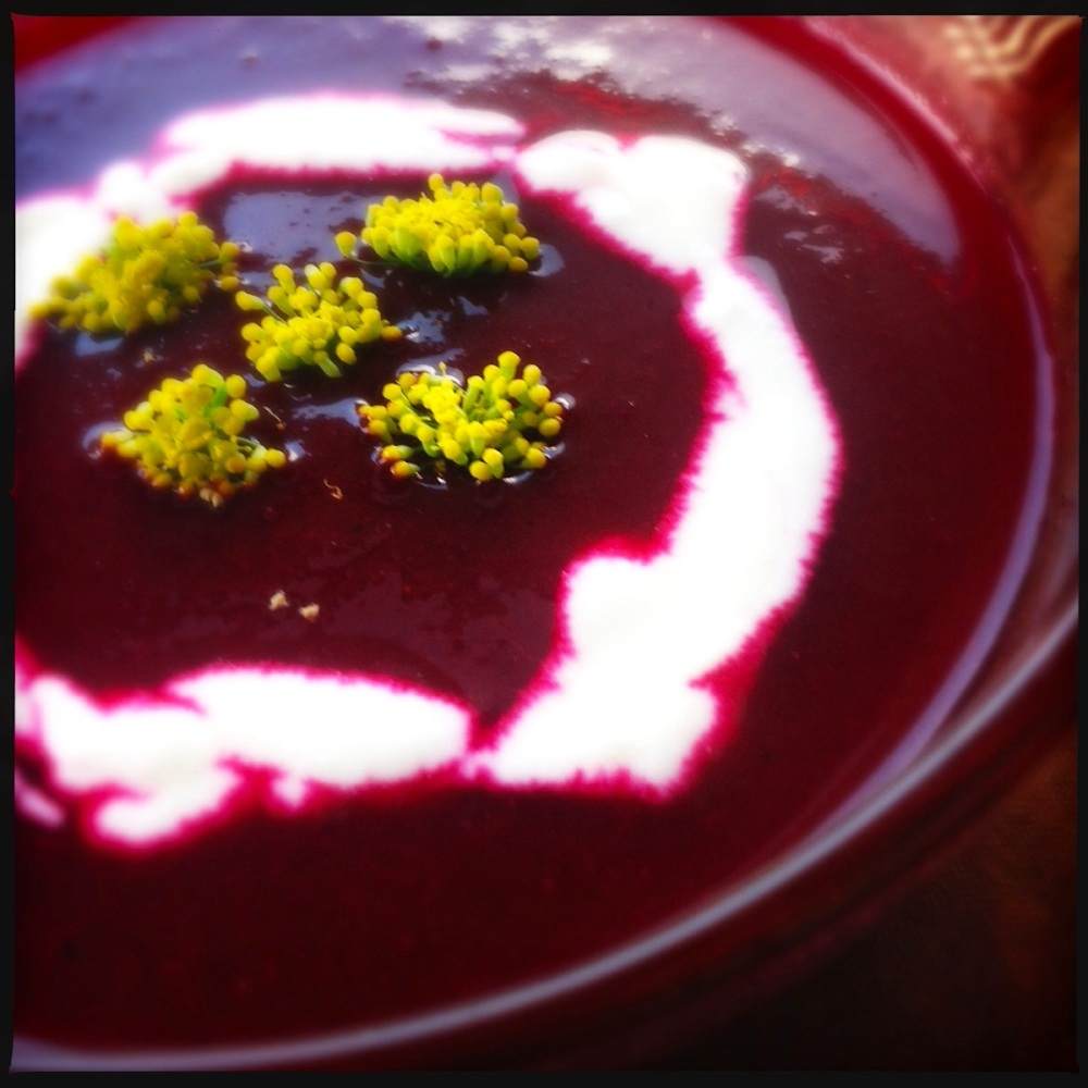Chilled Beetroot Soup | Heat in The Kitchen | Vegetarian Recipes | Summer Soups