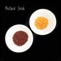 Indian Essentials: Mustard Seeds - Black, Brown and Yellow - and Mustard Oil