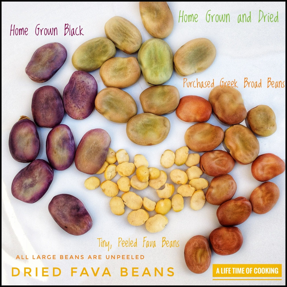 Dried Fava (Broad) Beans