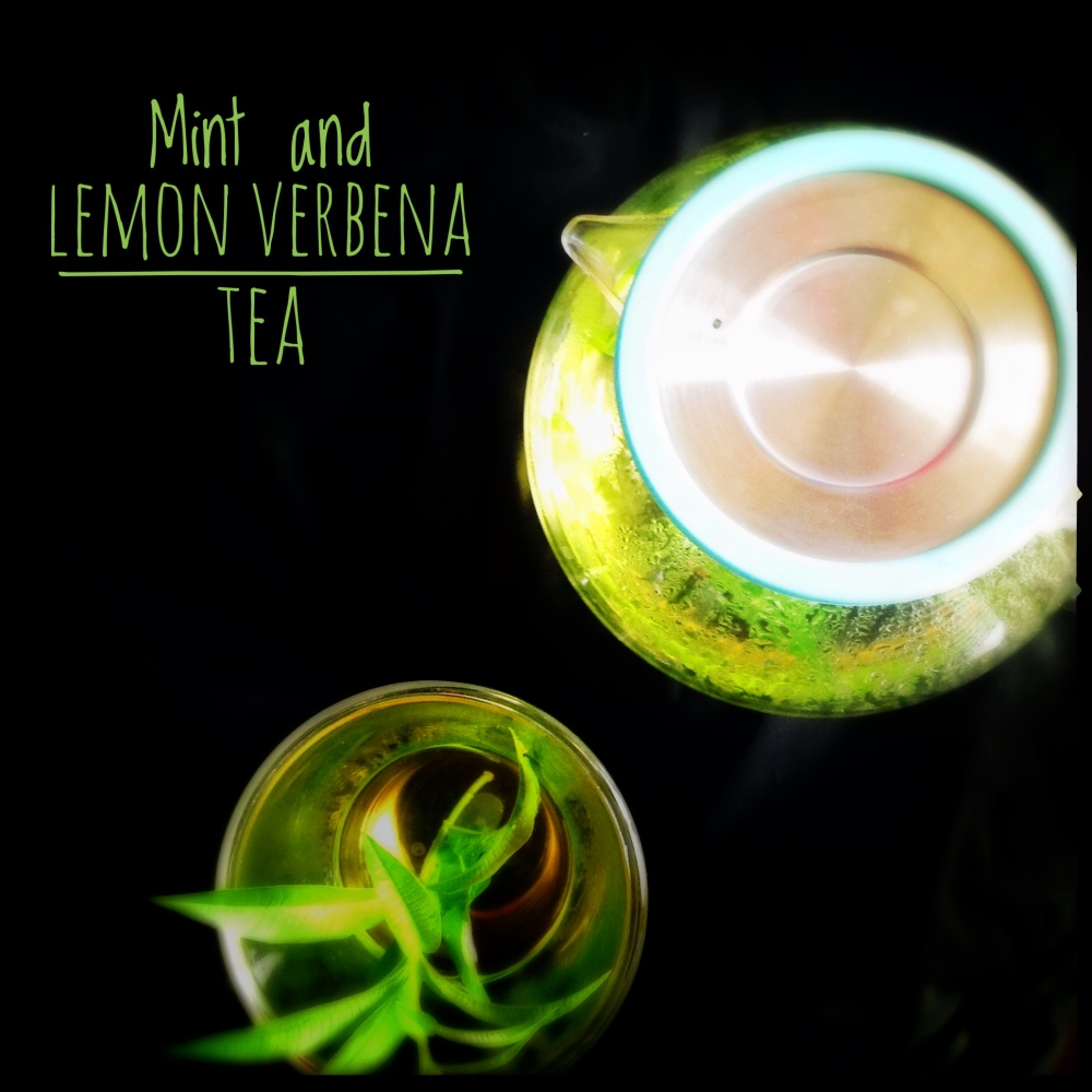 Mint and Lemon Verbena Tea