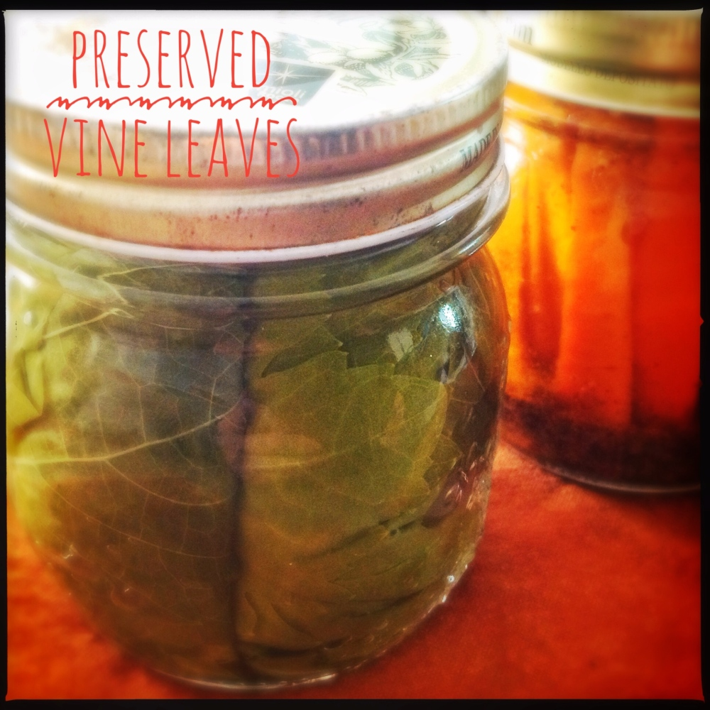 Preserving Grape Vine Leaves