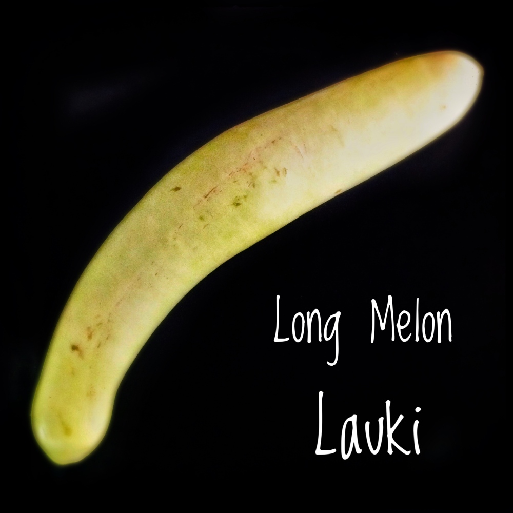 Long Melon | Bottle Gourd | Lauki