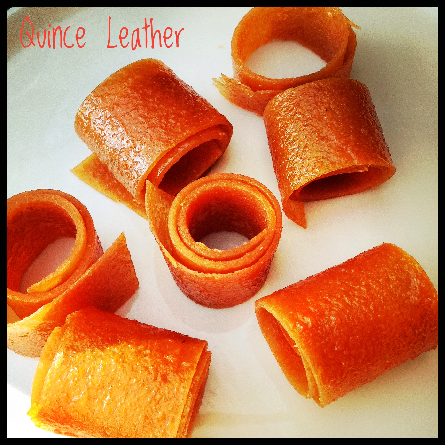 Quince Leather