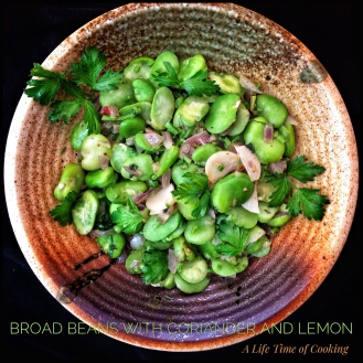 Broad Beans with Coriander