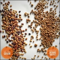 Moth Beans (Matki) and Horse Gram - Different lentils that look similar